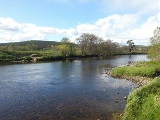 Auchernack Burn Pool, Grantown