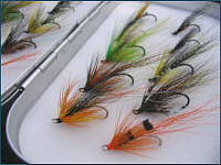 Flies online - salmon flies