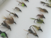 Flies online - trout nymphs