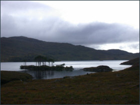 Trout Fishing Assynt