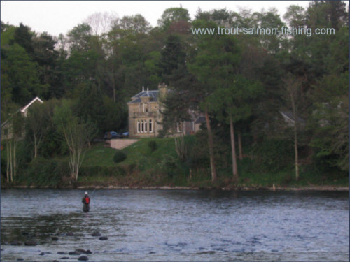 Fishing the MacIntyre pool, River Ness