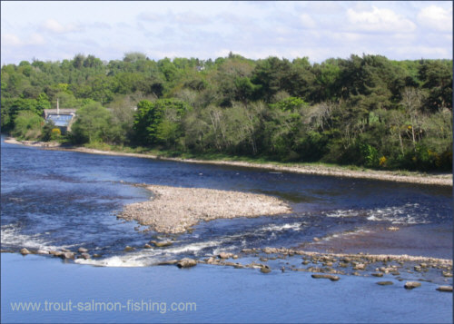 The Weir, Inverness Angling Club water, River Ness.