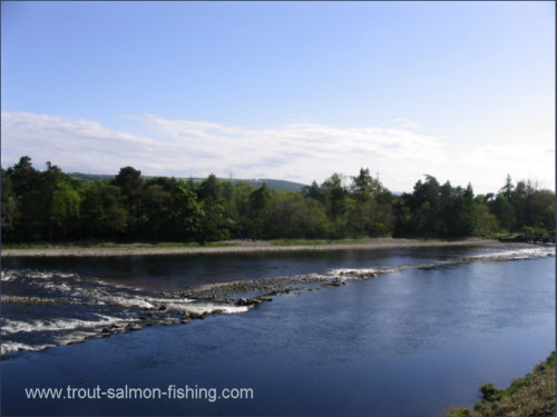 The Weir Pool, River Ness salmon fishing