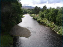 River Carron Salmon Fishing