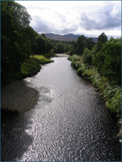 Salmon Fishing River Carron