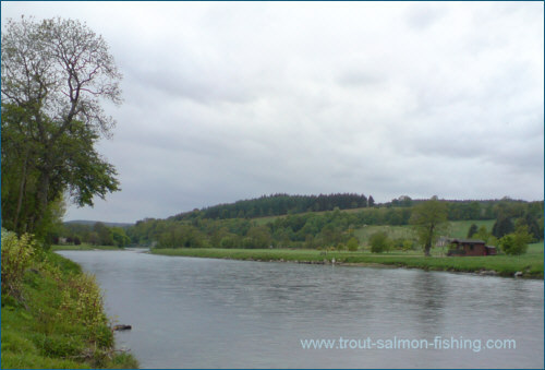 Wester Elchies - salmon fishing on Spey