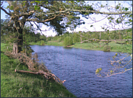 Sea Trout Fishing Pool, River Spey