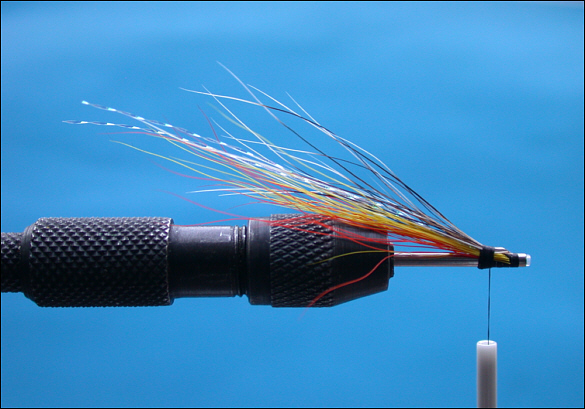 The Beltra Badger Tube Fly - step 5