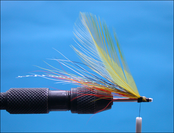 The Beltra Badger Tube Fly - step 6
