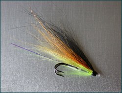 salmon tube fly with double hook