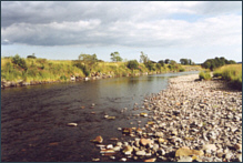 Fishing on the River Nith