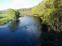 River Spey fishing at Grantown