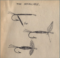 The Infallible fly