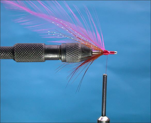 The Lammas Shrimp Tube Fly - step 5