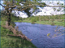 River Spey - Little Stream