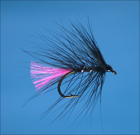 Simple Loch Trout Fly