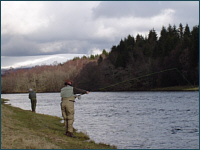 Grantown Salmon Fishing