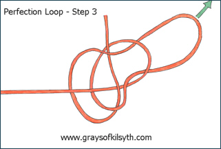The Perfection Loop - Step Three