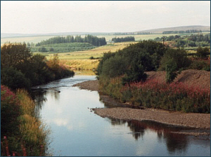 River Allan at Greeenloaning