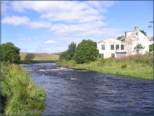 River Allan Salmon Fishing at Kinbuck