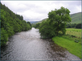 River Broom - salmon and sea trout fishing