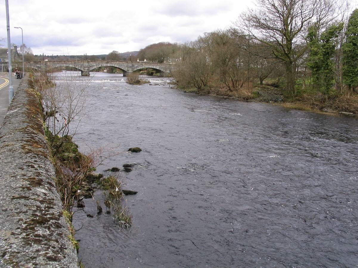 River Cree