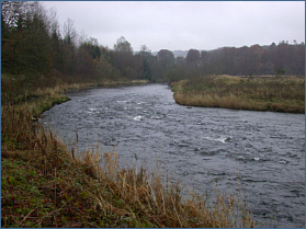 River Don at Backhill