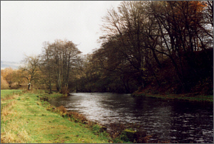 The Dam, River Endrick