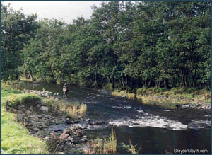 River Endrick Salmon Fishing