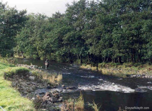 Loch lomond salmon fishing for Loch lomond fishing