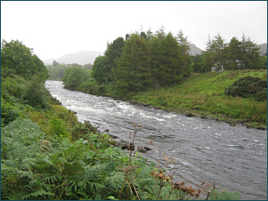 River Ewe Salmon Fishing
