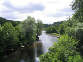 River Findhorn Salmon Fishing
