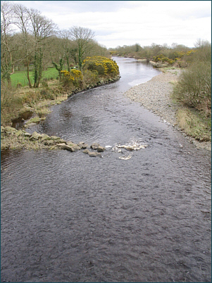 Salmon and Sea Trout Fishing on the River Luce