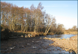 River Nairn Salmon Fishing Association