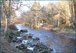 River Nairn Salmon and Sea Trout Fishing