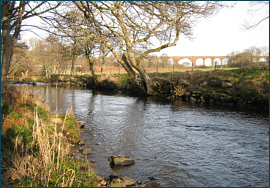 River Nairn Salmon Fishing