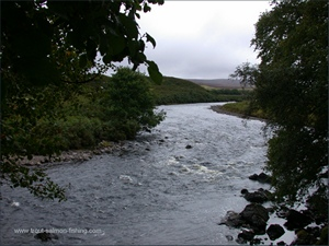 Salmon Fishing on the River Naver