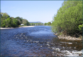 River Ness - salmon and sea trout fishing