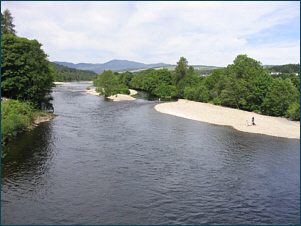 River Tummel Salmon Fishing