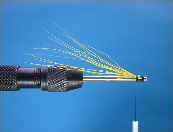 Ruddy Buck Tube Fly - step 2