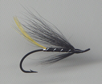 Salmon fly - Stoat's Tail