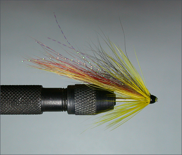 Salmon needle tube fly - Spey Shrimp step 6