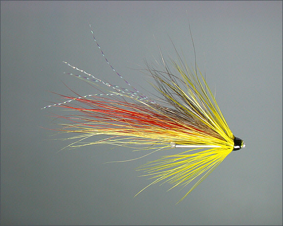 Scottish Spey Shrimp