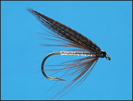 Sea Trout Fishing Fly