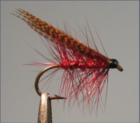 Dark Mackerel - Sea Trout Fly