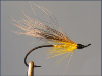 Golden Squirrel - Sea Trout Fly