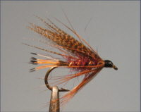 Mallard and Claret - Sea Trout Fly