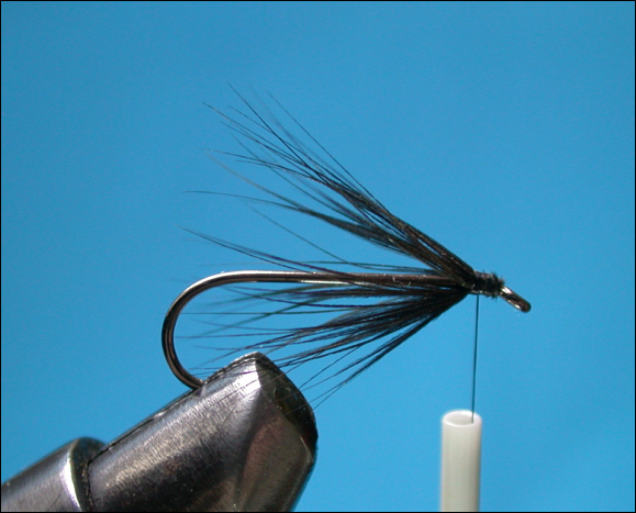 Simple Sea Trout Fly - step 3