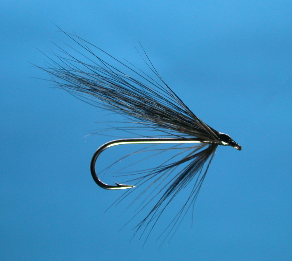 Simple sea trout fly for Simple fly fishing