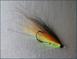 salmon tube fly with single up facing hook